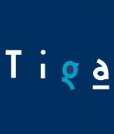 Tiga offers to advise government on game industry support