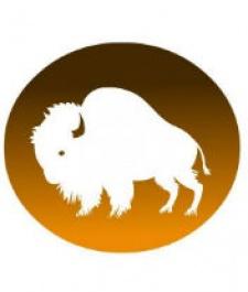 Buffalo Studios copies NimbleBit, pens open letter criticising Zynga of cloning Bingo Blitz