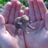 Report: Magic Leap eyes $500 million investment round which values it at $6 billion