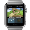 Still a nascent market, but there are now over 600 Apple Watch games