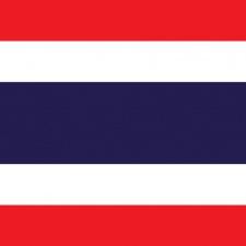Thailand mobile game trends: Garena dominates through licensed games