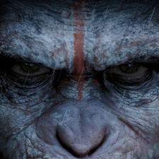 Fox faces $2.5 million lawsuit from Snail Digital over lack of support for War for the Planet of the Apes mobile games