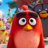 Rovio partners with the Chicago Bulls NBA team to create the Angry Birds Eye View Cam