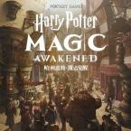 Warner Bros. and NetEase partner for card RPG Harry Potter: Magic Awakened
