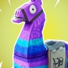 Epic Games embroiled in further lawsuit over loot boxes