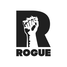 Rogue Games raises $2.5 million in Series A Funding