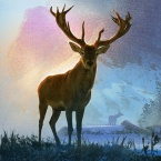 Deer Hunter 2020  logo