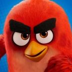 Angry Birds Tennis logo
