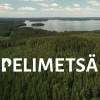 Games industry supports Finnish Natural Heritage Foundation with a record-breaking half-million Euros